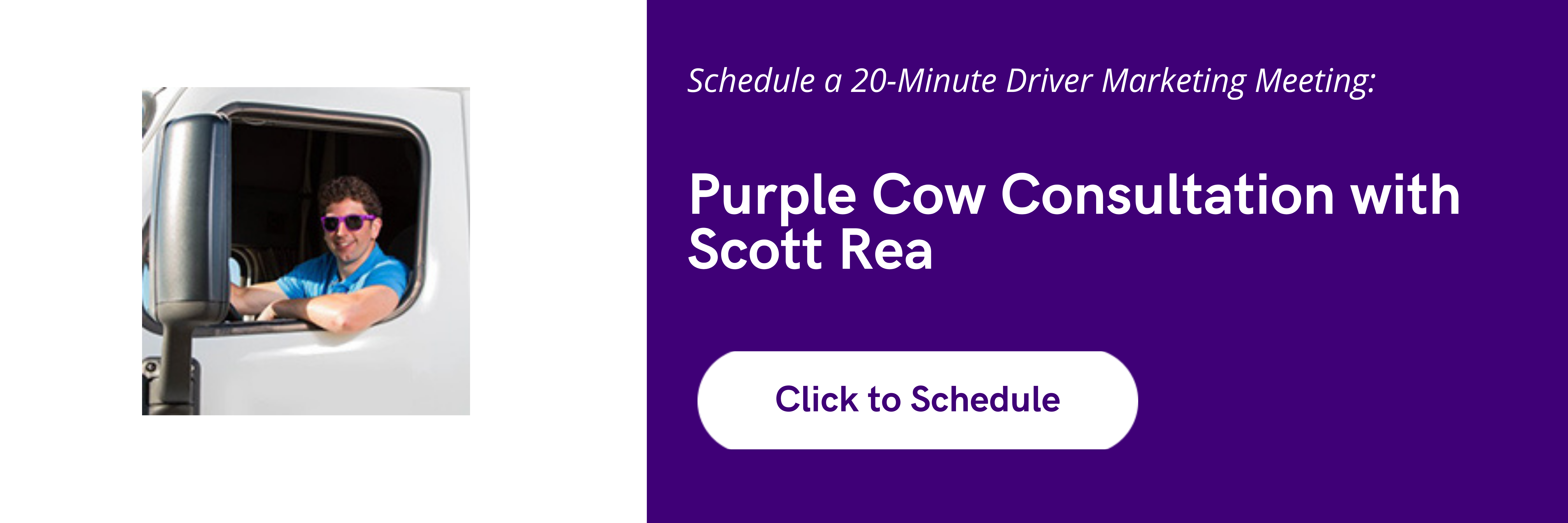 Purple Cow Consultation (1)